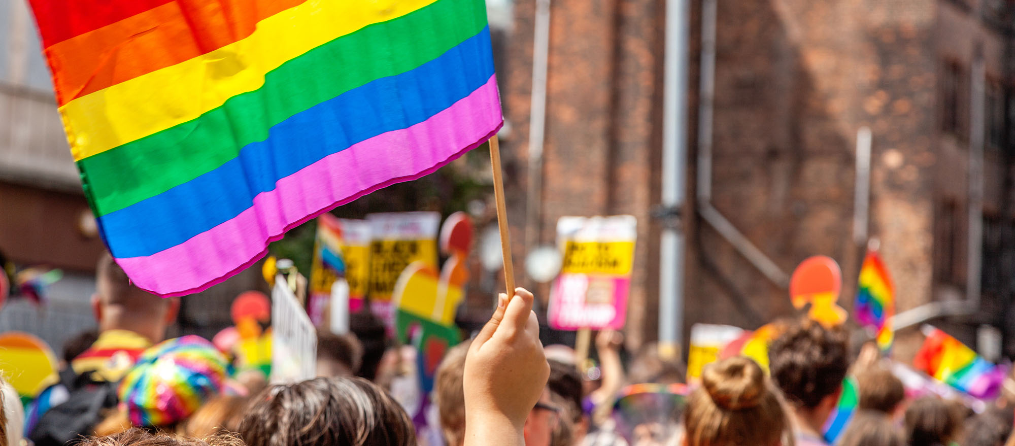 rent a tree for a pride parade